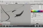 illustratorで描く。鱗粉あすさんライブペインティング
