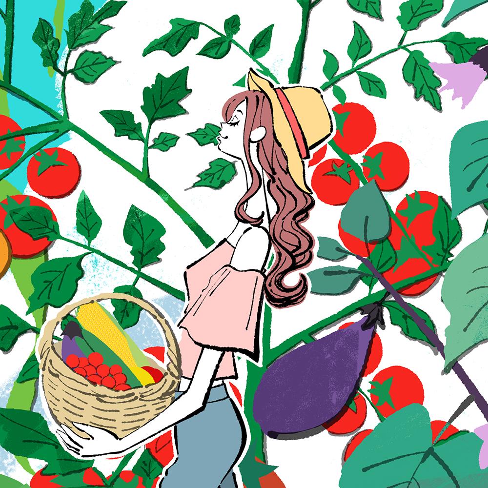 夏野菜を収穫する麦わら帽子の女の子のイラスト